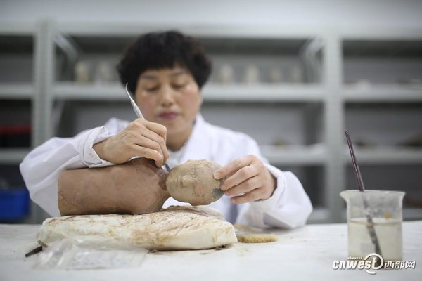 Museum Suffers Shortage of Relics Professionals