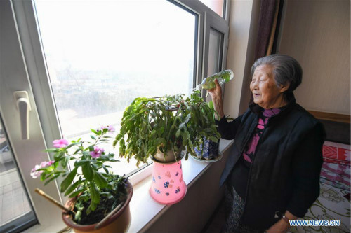 Caring System for Elder Citizens Optimized in Siping, NE China's Jilin