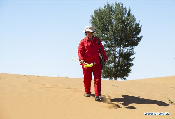 Pic Story of Patrolling Worker of Natural Gas Pipes in China's Inner Mongolia